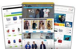 شرکت طراحی سایت فروشگاهی در کرج | طراحی سایت حرفه ای